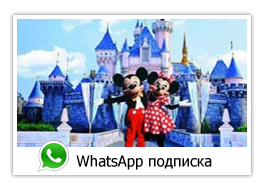 WhatsApp подписка